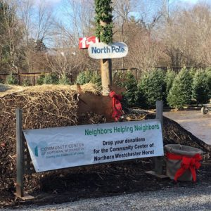 Gossett Brothers Nursery has everything you need for Christmas