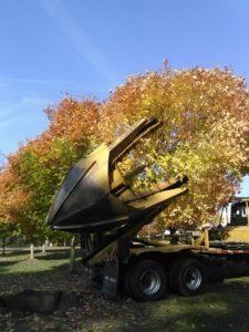 Big John 90D tree moving machine services from Gossett Brothers Nursery